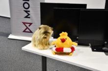 Společně s MONETOU jsme věnovali znevýhodněným školákům IT techniku v hodnotě přes 2,2 milionu korun